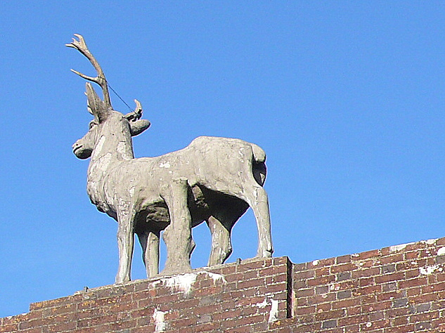 The Charborough Stag