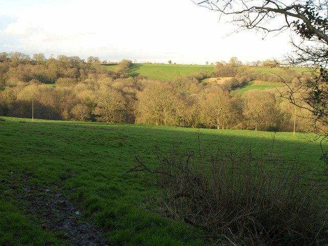 Field near Minson's Hill Farm