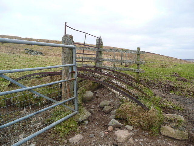 Strange gate structure