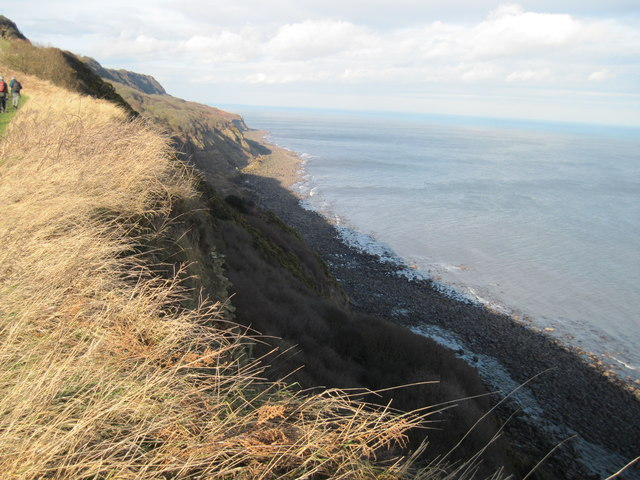Up  the  coast  from  Petard  Point