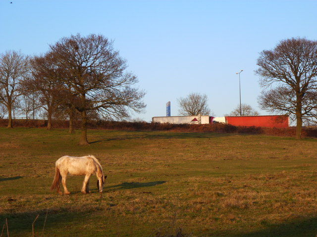 Field near Wilcrick, with the M4 close by