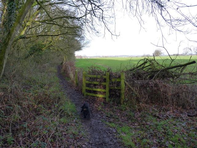 The footpath towards Coppice Farm
