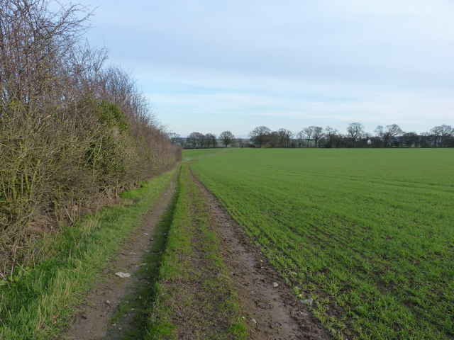 Along the bridleway towards Moat Hall
