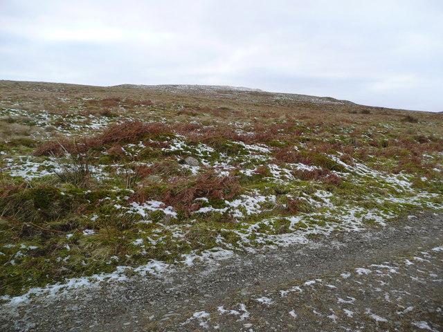 The NE slopes of Craig Kipmaclyne