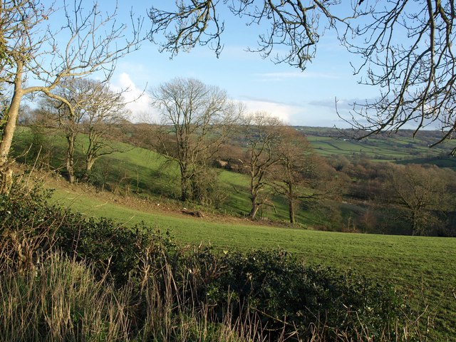 Fields and trees southwest of Holemore Cross