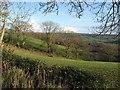 ST2010 : Fields and trees southwest of Holemore Cross by Derek Harper