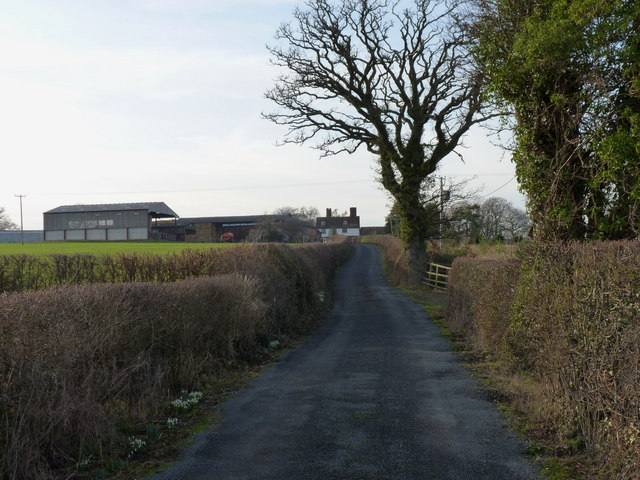 Up the lane towards Moat Hall