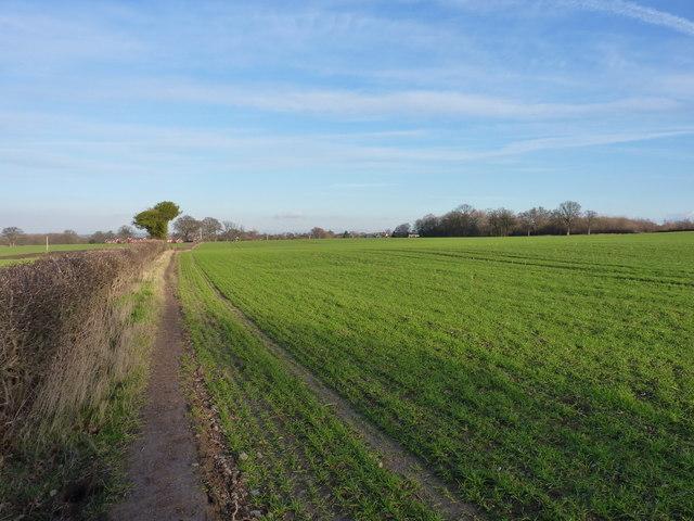 A field-edge footpath near Bayston Hill