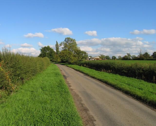 Six Hills Road towards White Lodge Farm