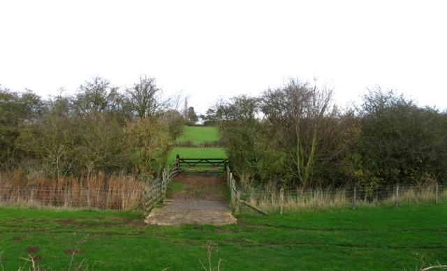 Link between fields