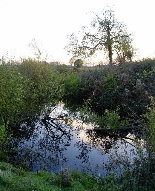Water-filled ditch at Denham Castle, Suffolk