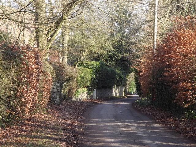 Wellhouse Road, Beech
