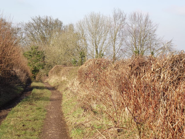 Tinker's Lane, Wivelrod
