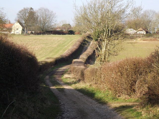 Tinker's Lane, South of Bentworth