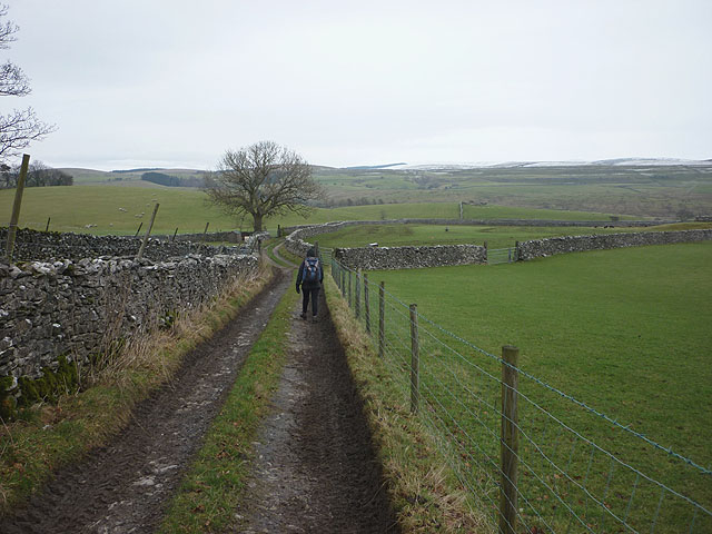 Footpath heading to the Ribble and High Birkwith