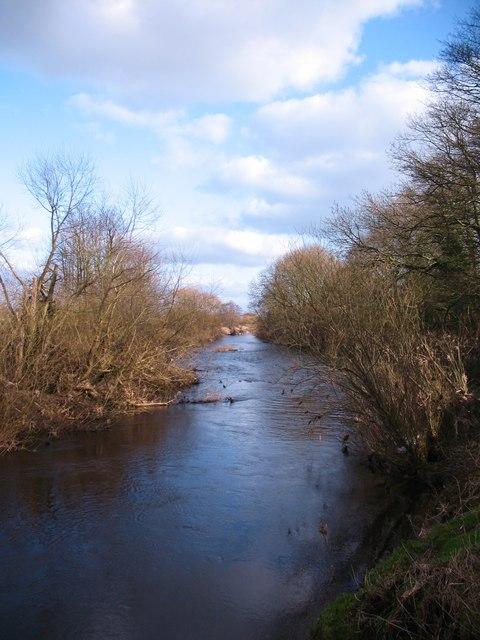 The Nidd near Cowthorpe