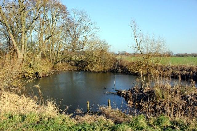 Pond at Lea Newbold