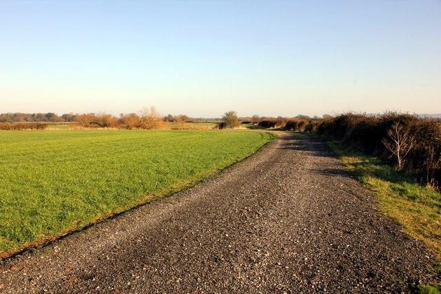 Farm Track at Lea Newbold