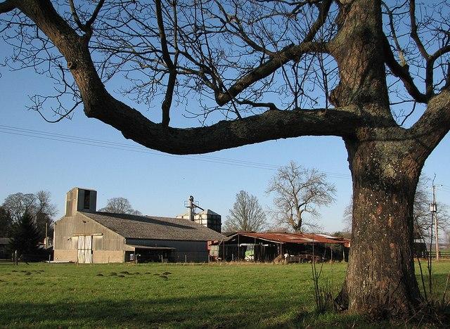 Pampisford: farm buildings