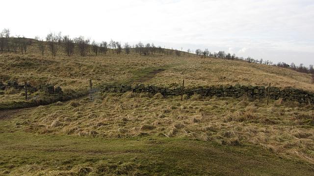 On Craigluscar Hill