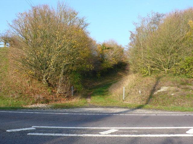 Butt Lane Hollow
