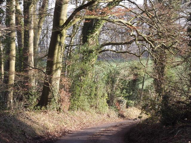 East of Heathcroft Farm