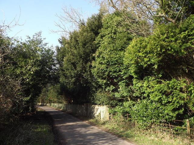Wivelrod Road