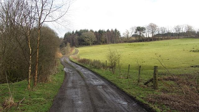 Trackbed, Devon Valley Railway