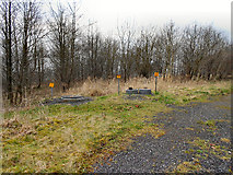 SD6409 : Gas Valve Markers, Red Moss Landfill by David Dixon
