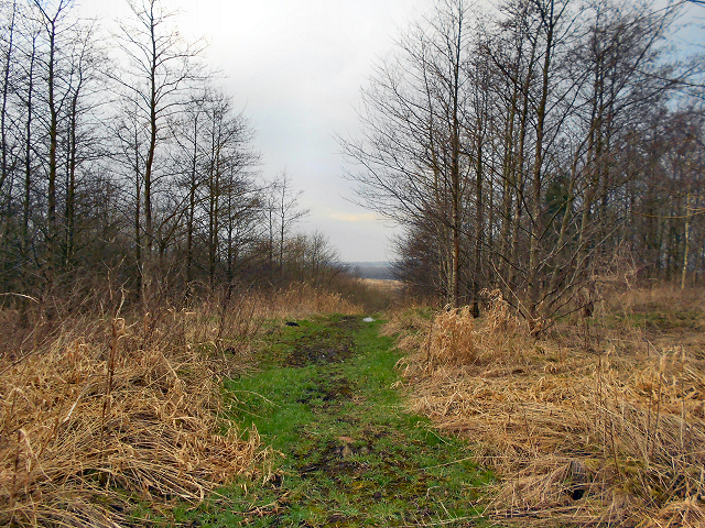 Path at Red Moss Landfill Site