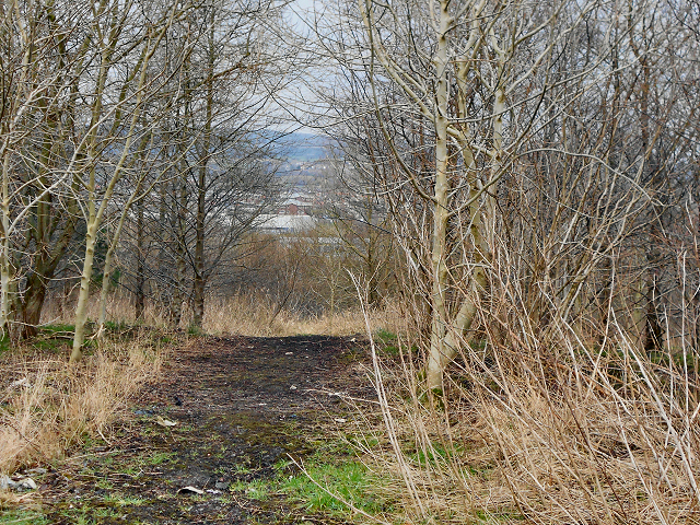 Track at Red Moss Landfill Site