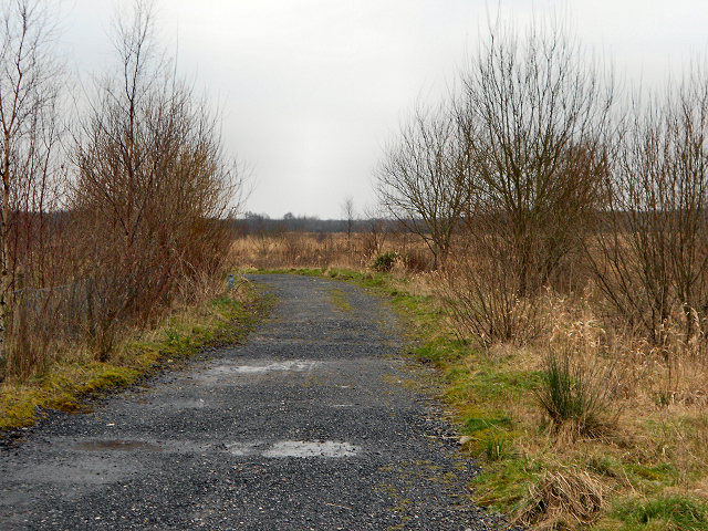 Path at Red Moss