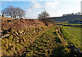 NS3662 : Field Track, Barnaigh Hill by wfmillar