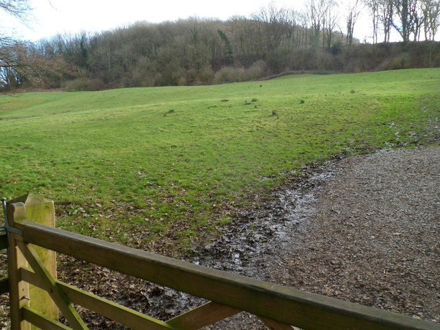 Field liable to flooding by Slad Brook