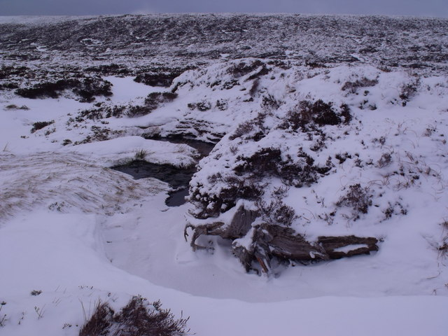 Bogwood in the bank of Caochan Odhar east of Bynack More