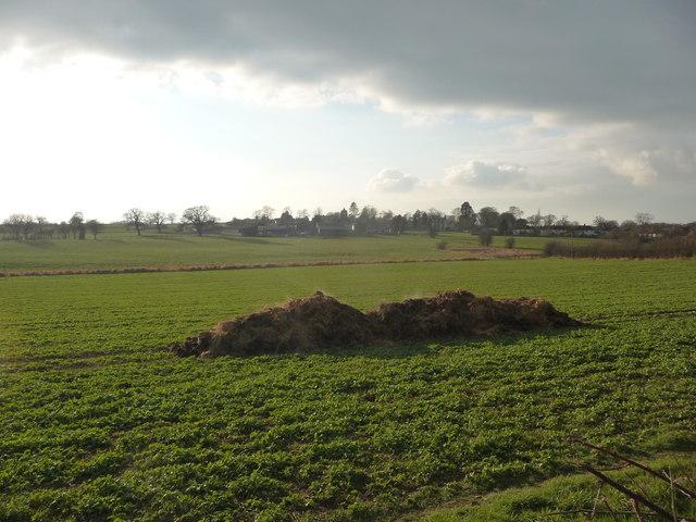 Fields near Castle Farm, Myddle
