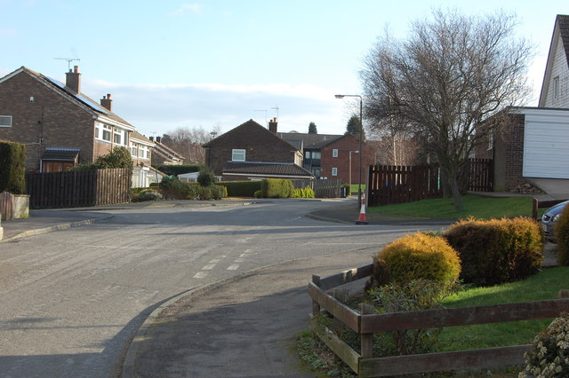 Junction Willow Road & Lime Tree Avenue