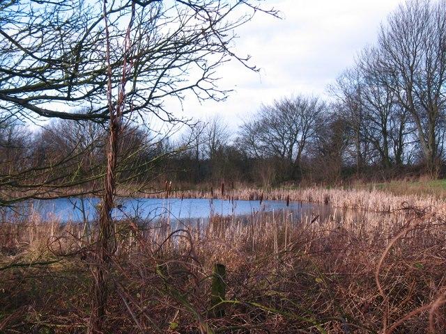 Kelcar Fish Pond
