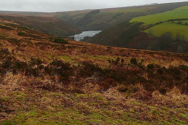Nutscale Reservoir