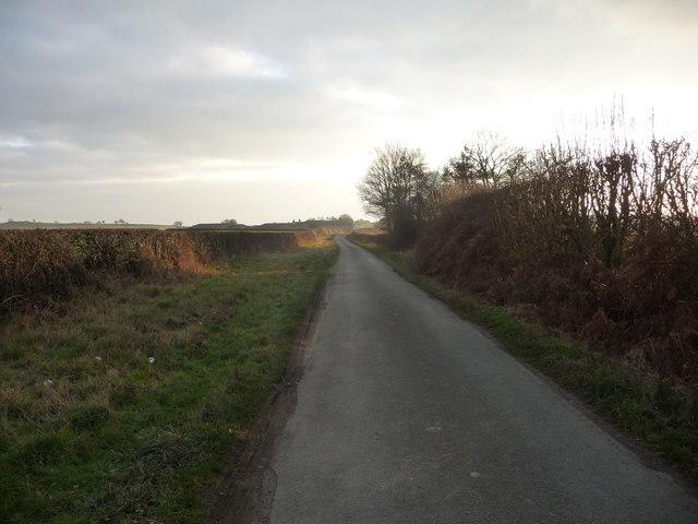 Part of Merrington Lane between Webscott and Merrington