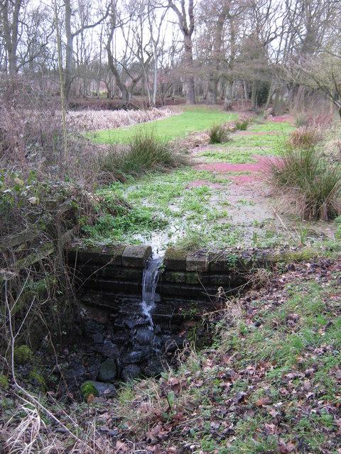 Small brook, Ravenshaw