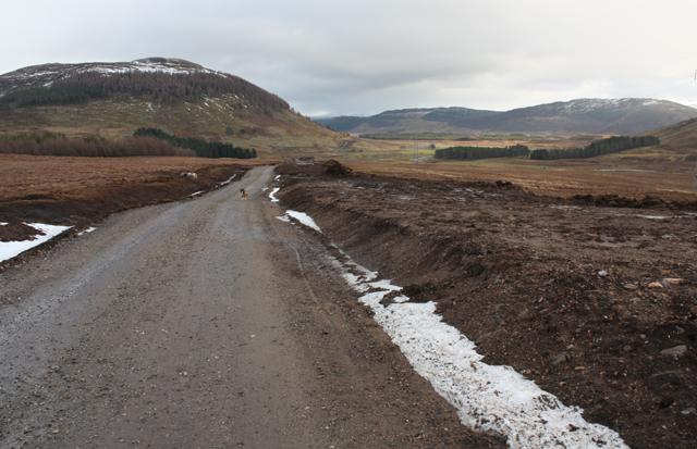 New road, Iolairig
