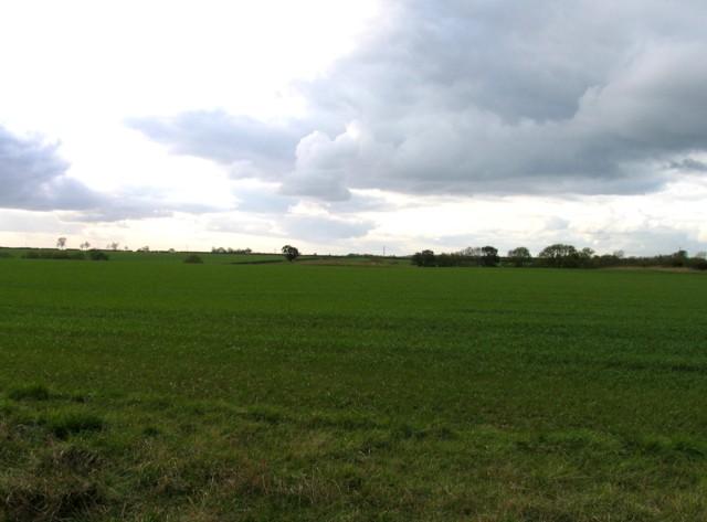 Fields by Welby Lane