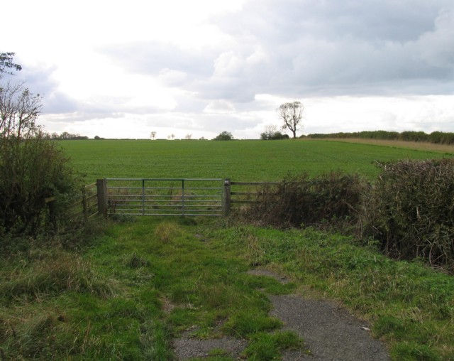 Gate by Welby Lane