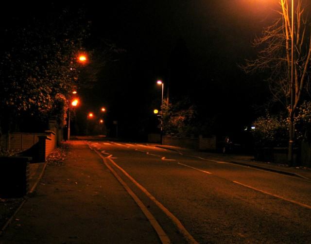 Belisha beacons and zebra crossing on Dalby Road