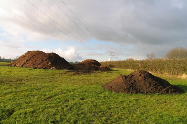 Mounds in field January 2012