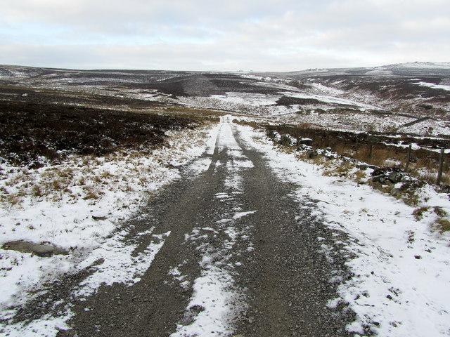 Forest Road descending towards Harden Gill