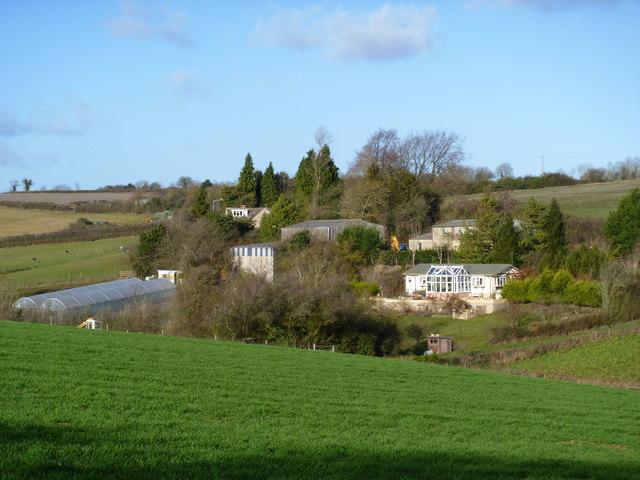 Brookfield Ostrich Farm [2]
