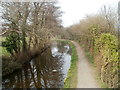 ST2997 : Disused canal north of Bevan's Lane, Sebastopol by Jaggery