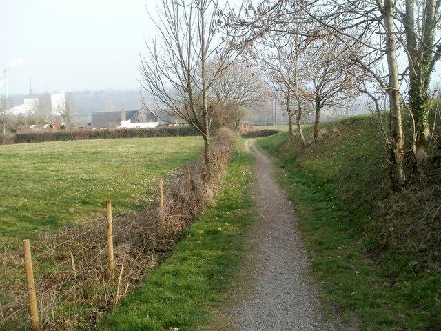 Track alongside Bevan's Lane, Sebastopol